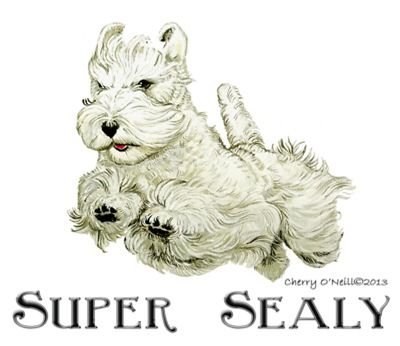 Super Sealyham Terrier