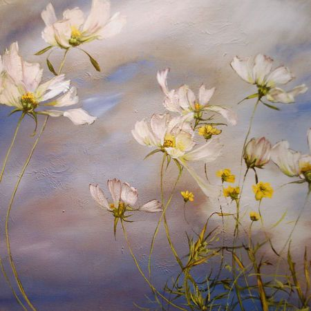 Claire Basler *•.✿cw
