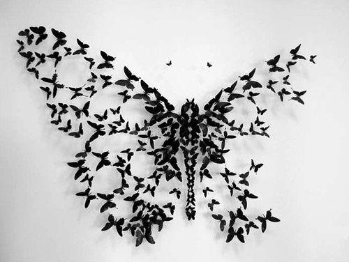 Wings inspire me