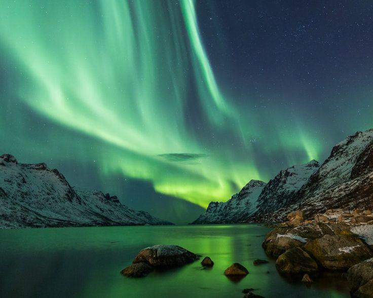 Noorderlicht in Noorwegen  Aanschouw het magische noorderlicht in het arctisch gebied van Noorwegen incl. 4 of 6 nachten in Radisson Blu Hotel Tromsø ontbijt noorderlichttour rendier- en Sami-excursie retourvlucht  EUR 799.00  Meer informatie  #vakantie http://vakantienaar.eu - http://facebook.com/vakantienaar.eu - https://start.me/p/VRobeo/vakantie-pagina