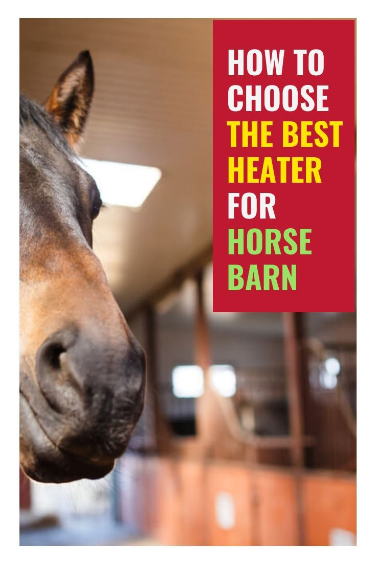 Keeping Your Horses And Yourself Warm In The Winter Can Be As Tricky Problem As Keeping Them Cool In Extreme Heat Horse Can Horses Horse Barn Horse Barns