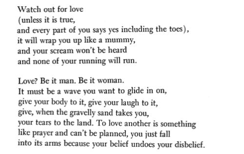 """Your belief undoes your disbelief.  Anne Sexton, """"Admonitions to a Special Person"""" - A Sea of Quotes"""