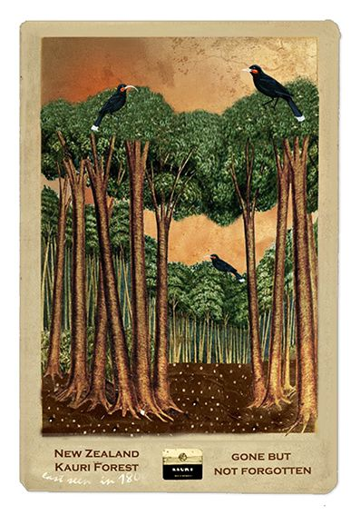 Kauri Forests - from the Gone But Not Forgotten collection by Auckland artist, Marika Jones. Available as paper artprints from www.imagevault.co.nz