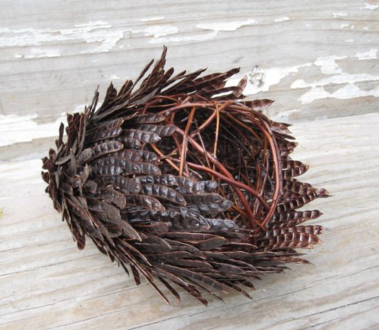 Contemporary Basketry: Gathered Materials, Layered Pod, Vivian Visser