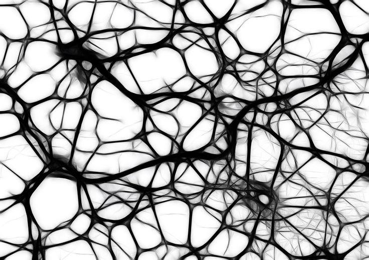 Kostenlose Illustration: Neuronen, Hirnzellen, Hirnstruktur - Kostenloses Bild auf Pixabay - 440660