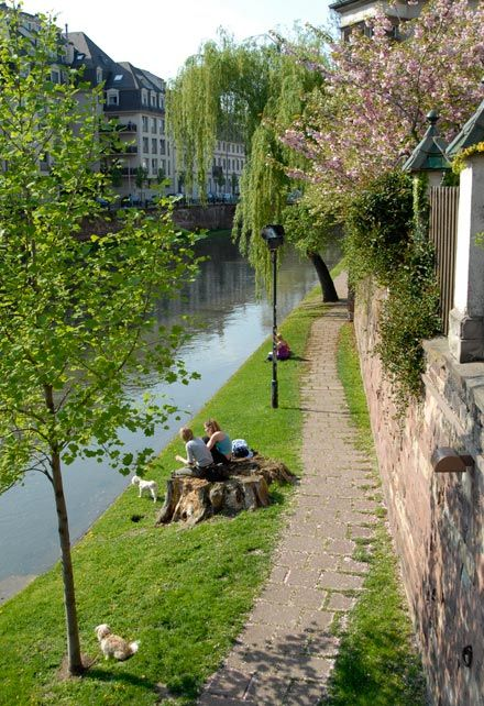 Promenade sur les quais (de l'Ill, pas du Rhin !)