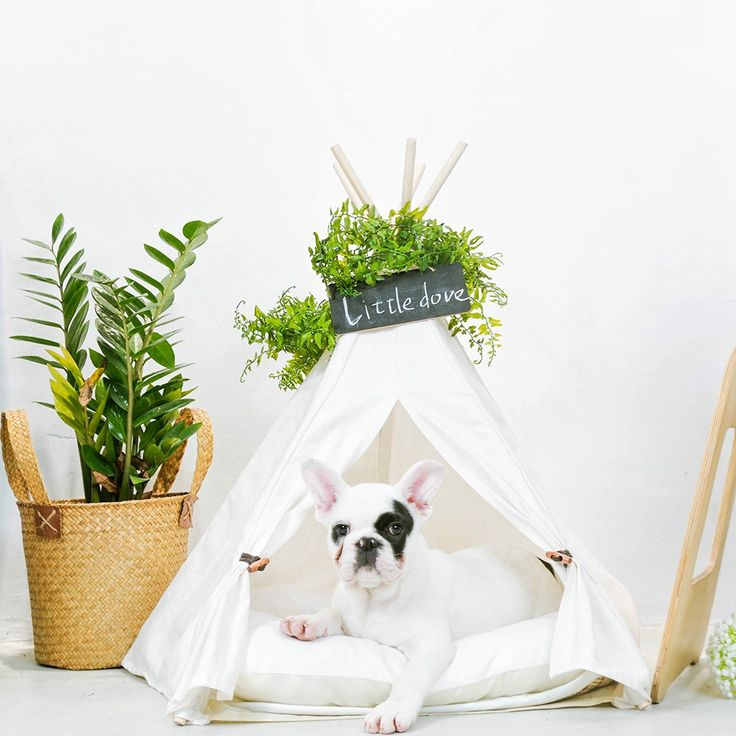 Dog Teepee Tent u2013 Keep Your Dog Comfortable u0026 Stylish! | All Pet Cages  sc 1 st  Pinterest & 65 best Dog Teepee images on Pinterest | Tents Bedrooms and Child ...