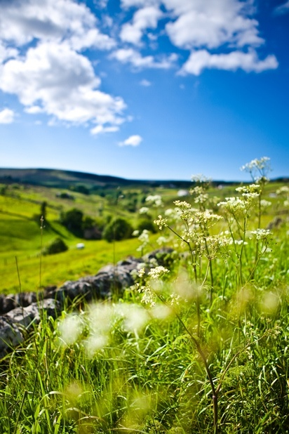 Stunning scenery and breathtaking views can be found in the Durham Dales