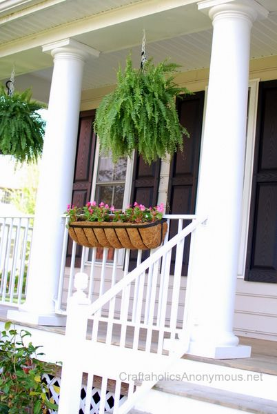 17 best images about hanging plants on pinterest master for Front porch hanging plants