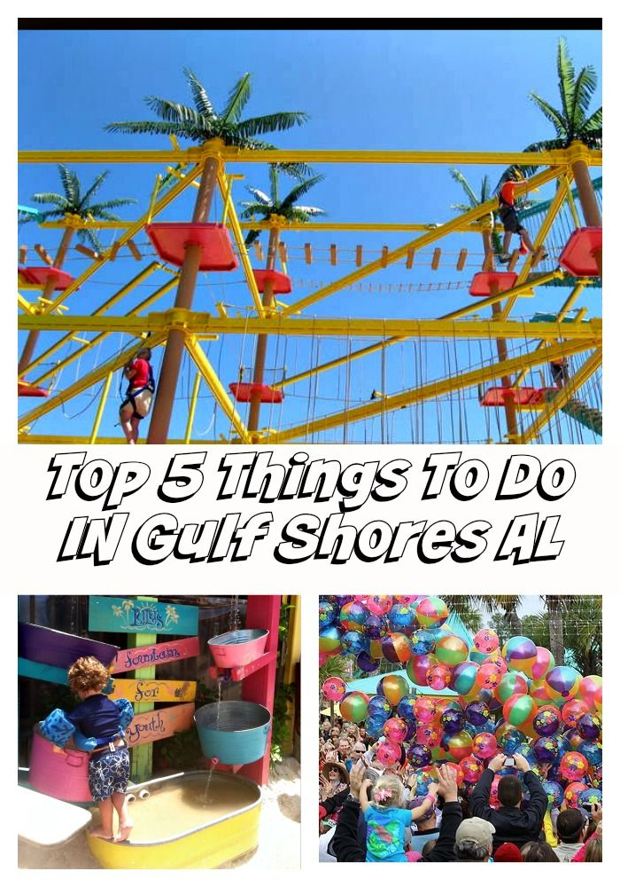 Top 5 Things To Do In Gulf Ss Alabama 24 Hours Orange Beach 2018 Pinterest Vacation And