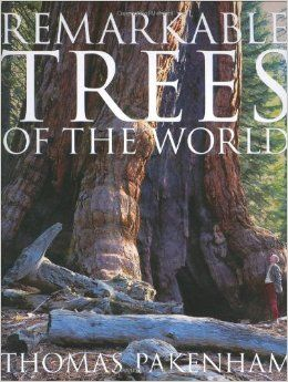 One of my favorite books for art inspiration - pure tree eye-candy!