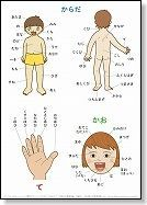 Great handout to teach body parts! 幼児教材・知育プリント | 幼児の学習素材館