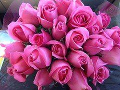 Rózsaszín, Rózsák, Virág, Bouquet