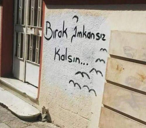 Okur Yazar - Poyraz Karayel