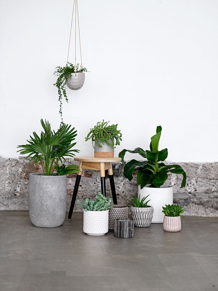 Flower pots for in-  and outdoor use by Bloomingville - happy changes