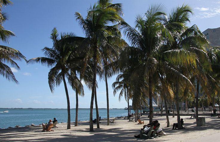 Krótkie wakacje na Florydzie? Polecam wybrać się na wycieczkę do Miami. Oto…