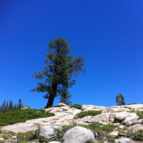 Pacific Crest Trail in Truckee, CA
