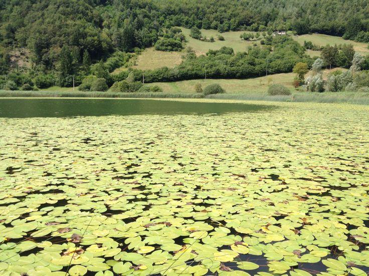 #lake #ampola