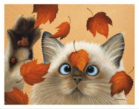 A Cat Called Erin Martin -  Lowell Herrero
