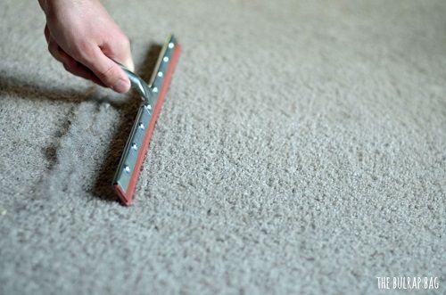 #7 If you have dogs inside your home, one of the things that you have to deal with is the fur strands on your carpet. There is one good way to get rid of those fur strands and that is to run a squeegee over your carpet.