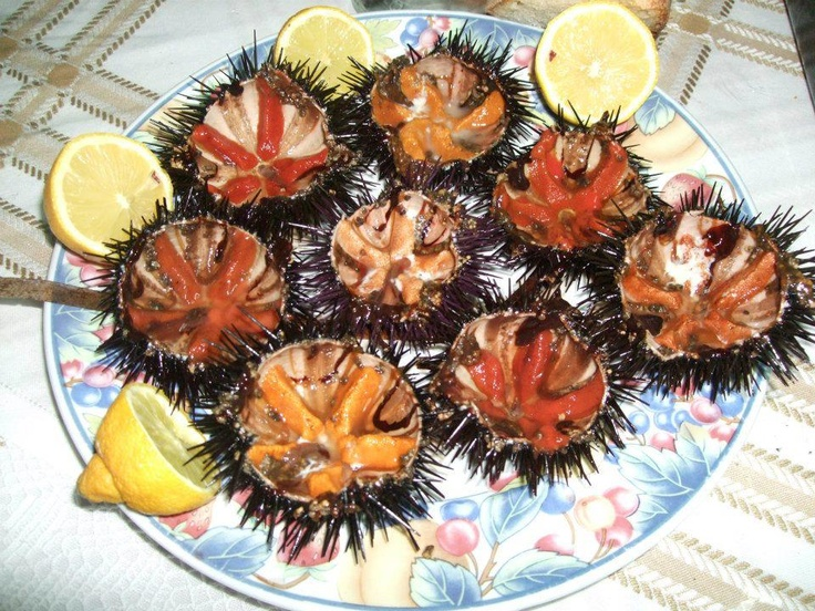 Sea urchins, just like in the waters surrounding eastern Sicily