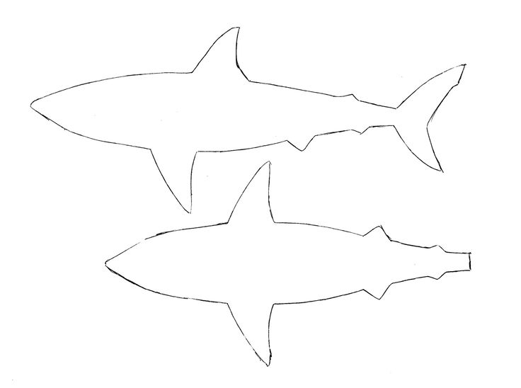 Картинки акул чертежи