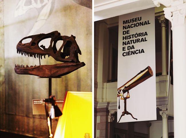 Museu Nacional de História Natural e da Ciência - Lisboa