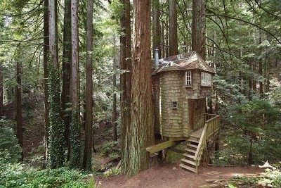 tree house, shingled tree house, cabin shingled, fairytale cottage in woods.... This looks just magical #