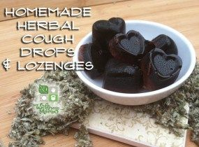 Recipe for Homemade Herbal Cough Drops or Lozenges with Herbs and Honey
