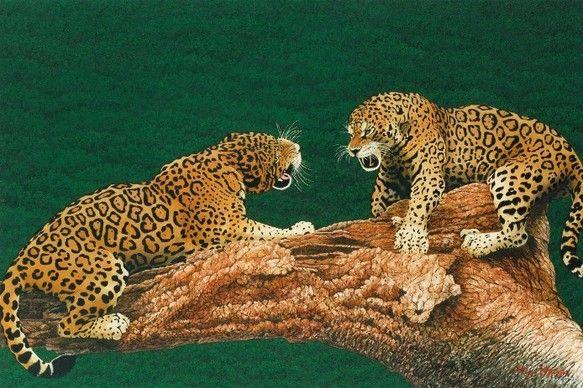 こちらはブラジルのジャガーを描いた作品の原画から、シルクスクリーンで製版した作品です!原画は(M30号91cm×60.6cm)のキャンバスに油絵で...|ハンドメイド、手作り、手仕事品の通販・販売・購入ならCreema。