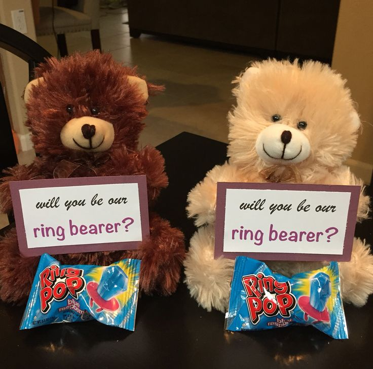 Will you be our ring bearers? My nephews loved these!