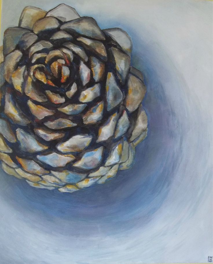 Pine Cone Study Acrylic on canvas