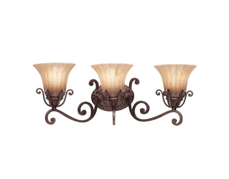Cottage Grove Collection 3 light Bath fixture in Carre Bronze