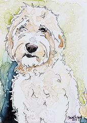 paintings of golden doodles - Google Search