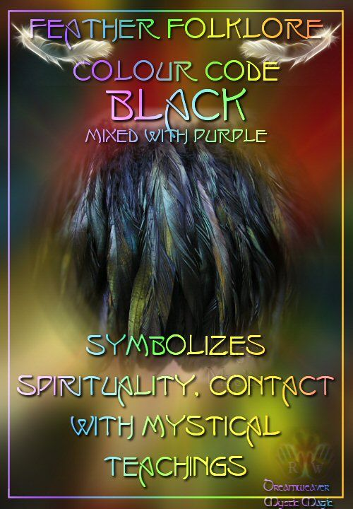 Black mixed with purple Feather - symbolizes spirituality, contact with mystical teachings