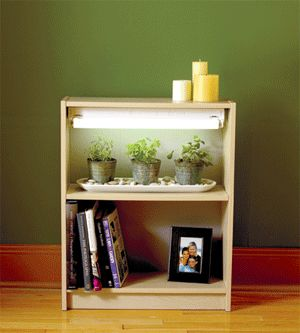 Build your own lighted herb bookcase and grow herbs all winter long