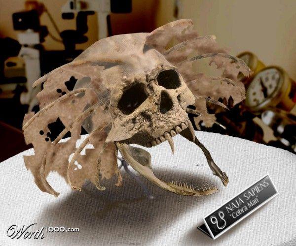 skull, human, giant - Google Search
