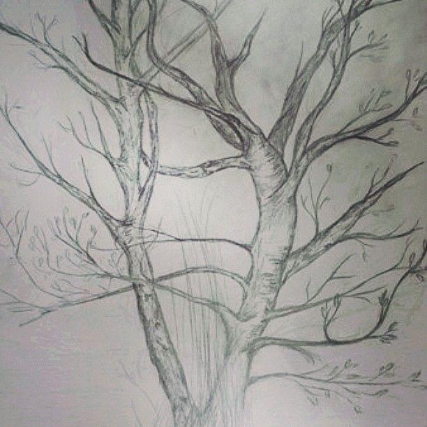 #myart #art #tree #drawing #sketch