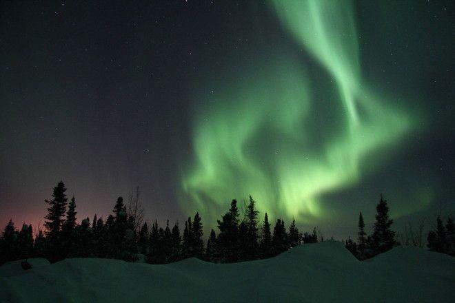 Photo by Larry Jenkins, Labrador City, NL.