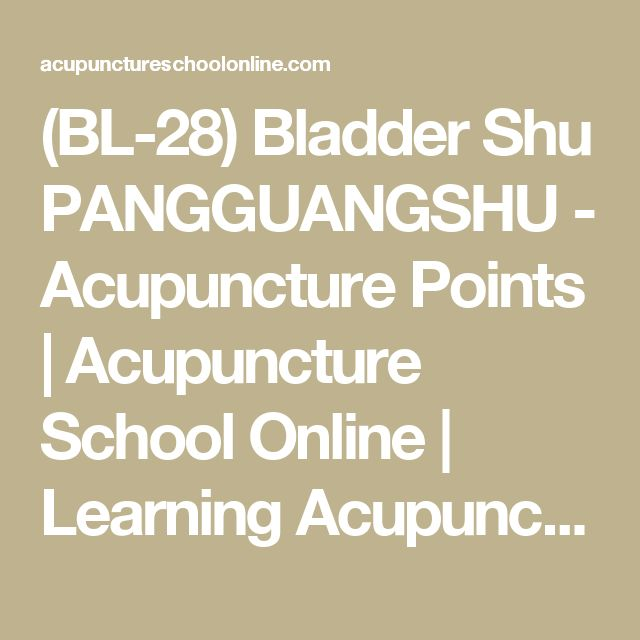 (BL-28) Bladder Shu PANGGUANGSHU - Acupuncture Points | Acupuncture School Online | Learning Acupuncture and Moxibustion Courses Online