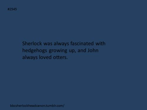 Sherlock Head Canon THIS IS PERFECTION I LOVE IT AND WILL NEVER LET IT GO JUST YES