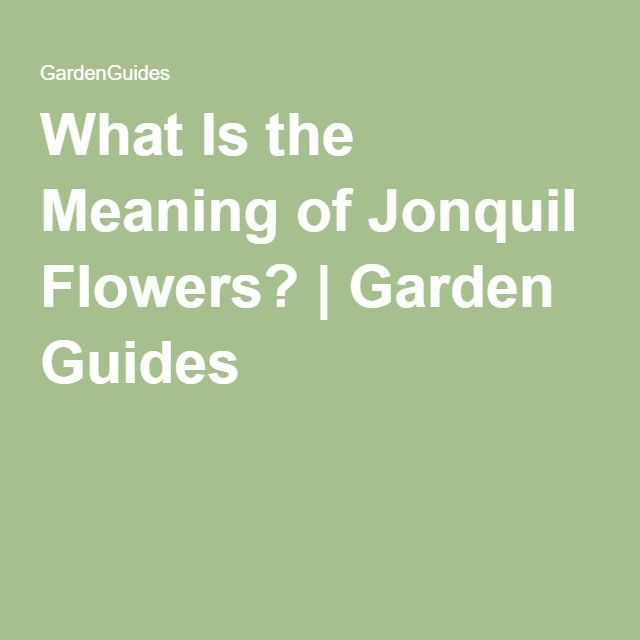 What Is the Meaning of Jonquil Flowers? | Garden Guides