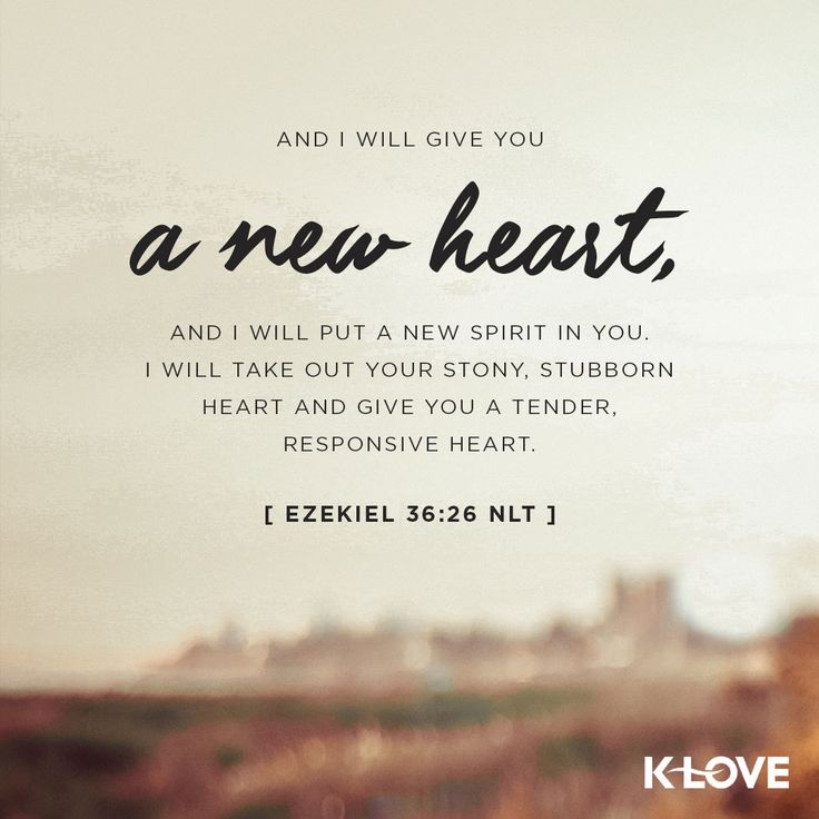 K-LOVE's Verse of the Day. And I will give you a new heart, and I will put a new spirit in you. I will take out your stony, stubborn heart and give you a tender, responsive heart. Ezekiel 36:26 NLT