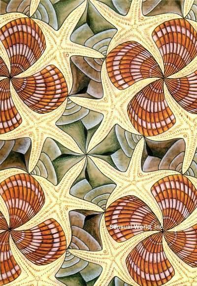 M C Escher Postcard Starfish Sea Shell Symmetry Drawing Optical Illusion | eBay
