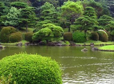 Le jardin Koishikawa Shokubutsuen abrite plus de 4 000 espèces de végétaux qui servaient de remède pendant l'ère Edo.