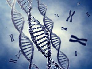 Bipolare Störung: Hinweise auf genetische Veranlagung beim Ansprechen auf Lithium: www.neurologen-und-psychiater-im-netz.org