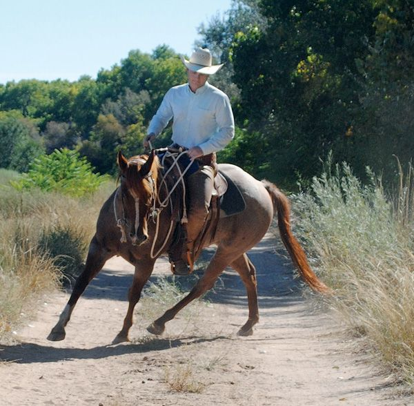 Ride that horse ... get active while riding, and feel your confidence blossom.