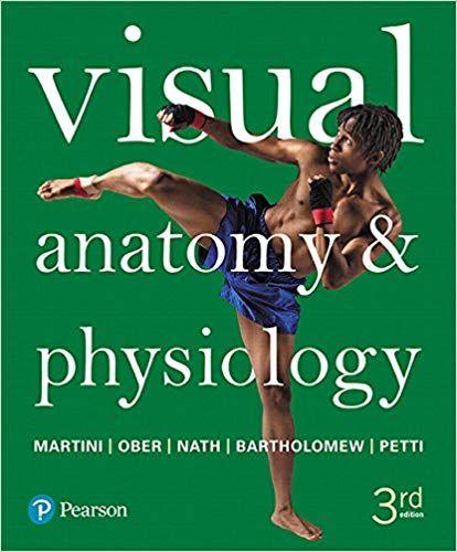 Human Anatomy Martini 6th Edition Pdf