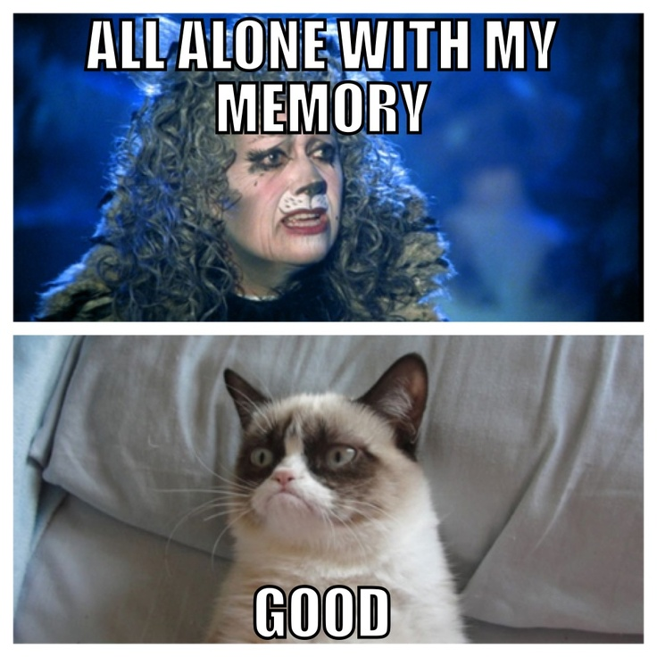 Cats the musical, Grumpy Cat meme Cat quotes funny