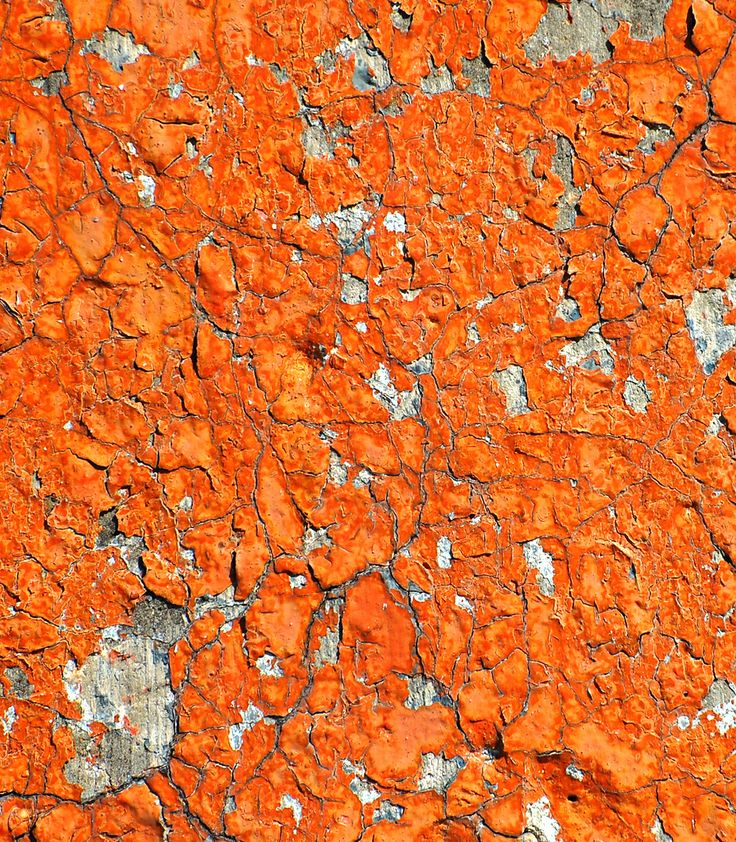 Orange Flaking Paint